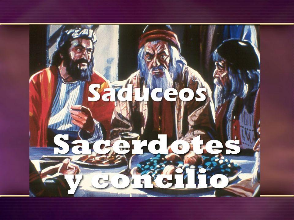 Saduceos Sacerdotes y concilio