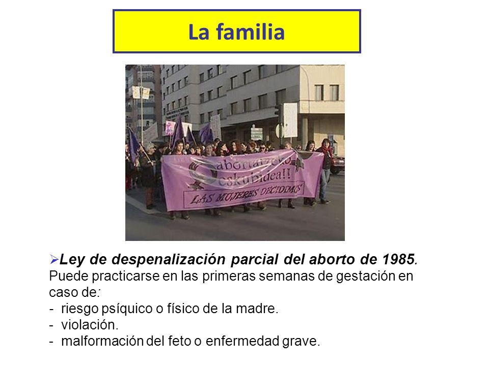 La familia Ley de despenalización parcial del aborto de 1985.