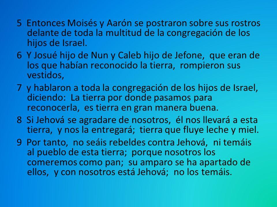 5 Entonces Moisés y Aarón se postraron sobre sus rostros delante de toda la multitud de la congregación de los hijos de Israel.