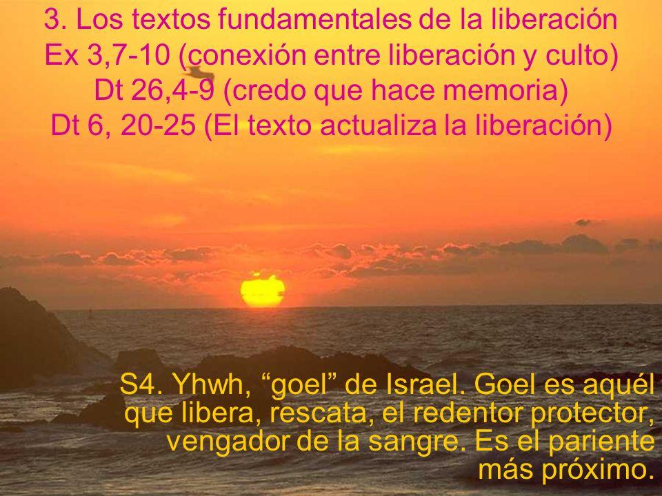 3. Los textos fundamentales de la liberación Ex 3,7-10 (conexión entre liberación y culto) Dt 26,4-9 (credo que hace memoria) Dt 6, 20-25 (El texto actualiza la liberación)