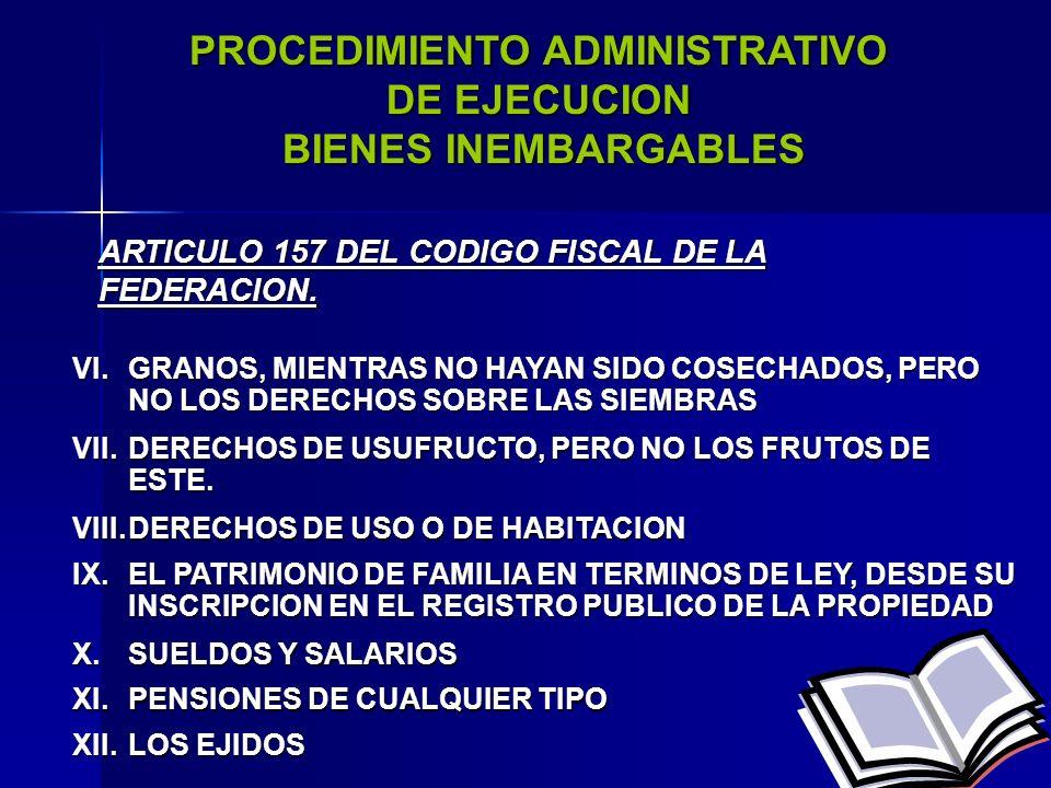 PROCEDIMIENTO ADMINISTRATIVO DE EJECUCION BIENES INEMBARGABLES