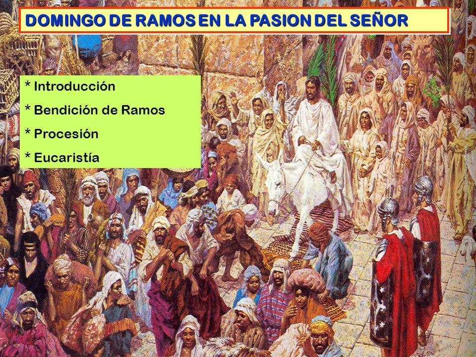 DOMINGO DE RAMOS EN LA PASION DEL SEÑOR
