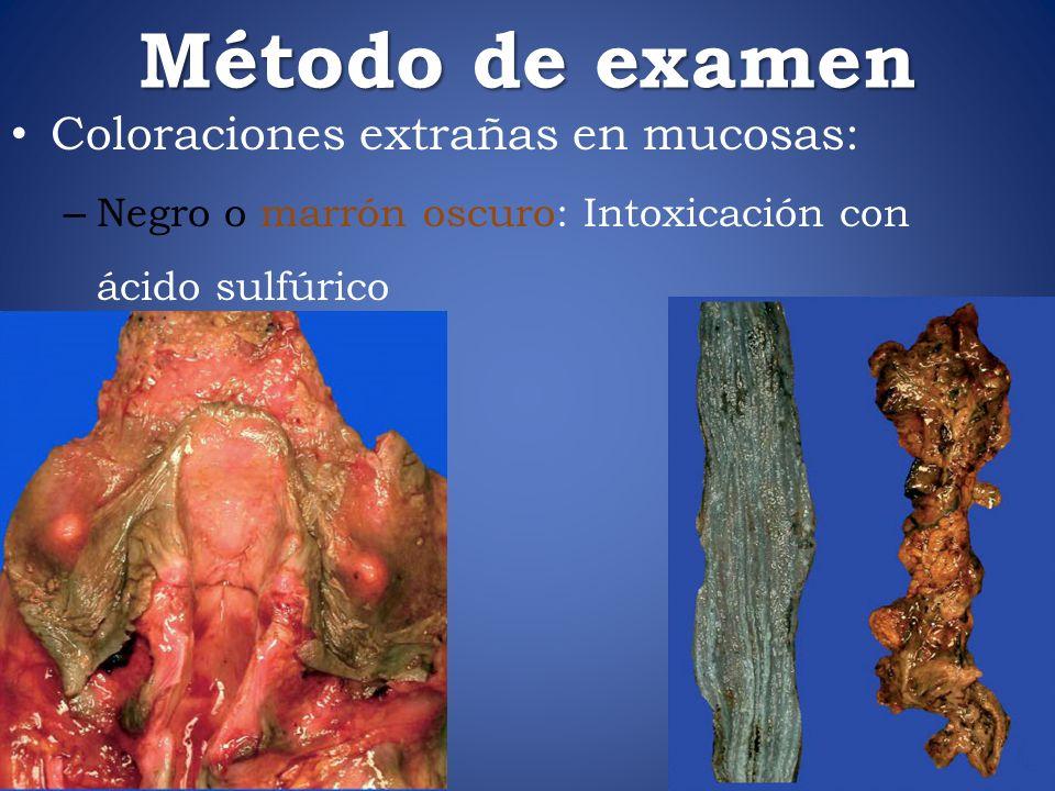 Método de examen Coloraciones extrañas en mucosas: