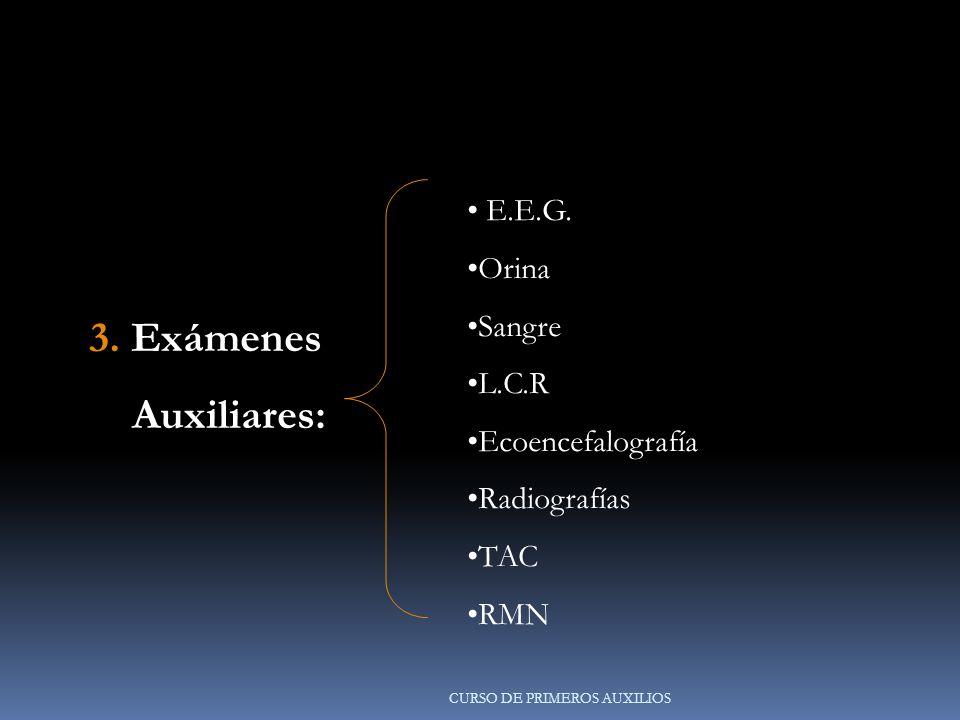 3. Exámenes Auxiliares: E.E.G. Orina Sangre L.C.R Ecoencefalografía
