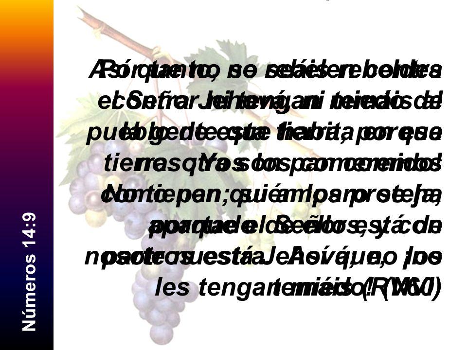 Por tanto, no seáis rebeldes contra Jehová, ni temáis al pueblo de esta tierra; porque nosotros los comeremos como pan; su amparo se ha apartado de ellos, y con nosotros está Jehová; no los temáis (RV60)