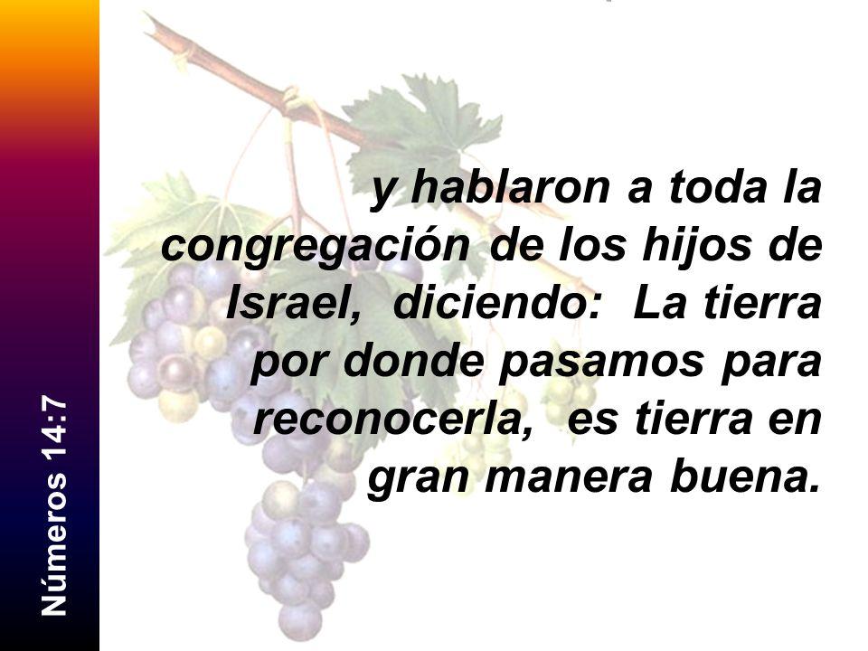 y hablaron a toda la congregación de los hijos de Israel, diciendo: La tierra por donde pasamos para reconocerla, es tierra en gran manera buena.