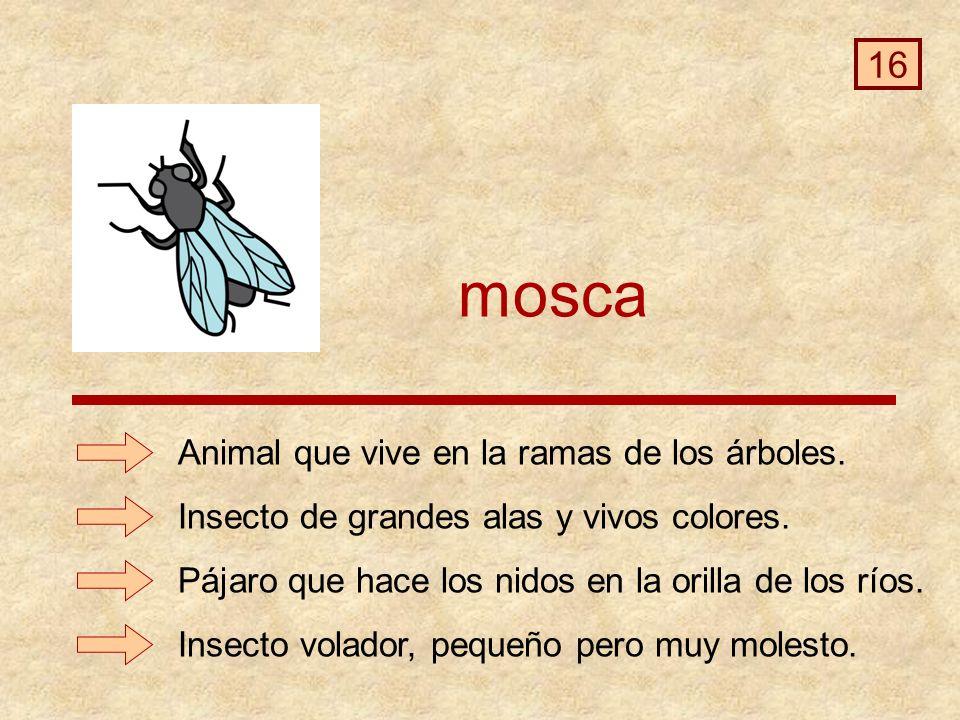 mosca 16 Animal que vive en la ramas de los árboles.