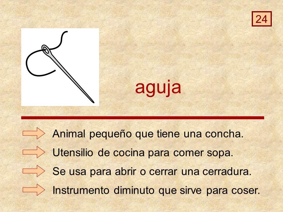 aguja 24 Animal pequeño que tiene una concha.