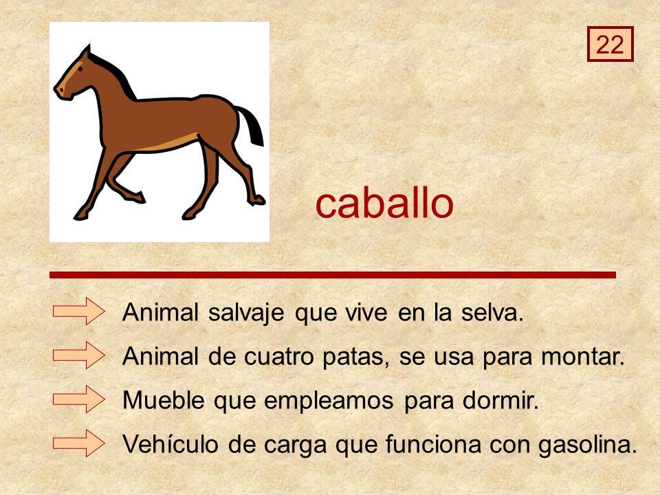caballo 22 Animal salvaje que vive en la selva.