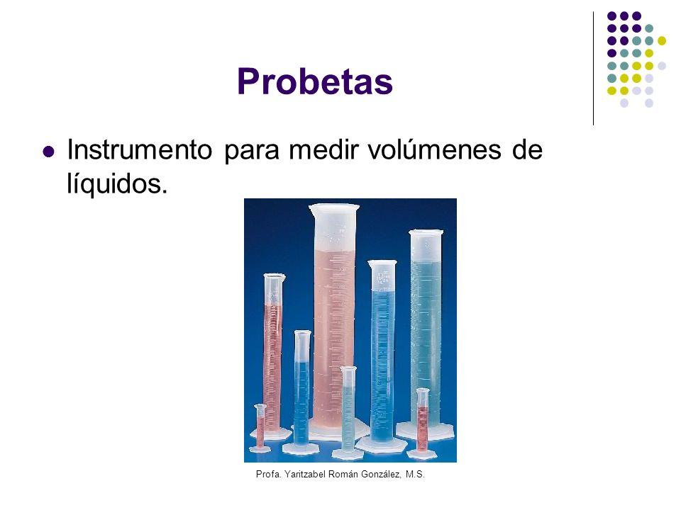 Profa. Yaritzabel Román González, M.S.