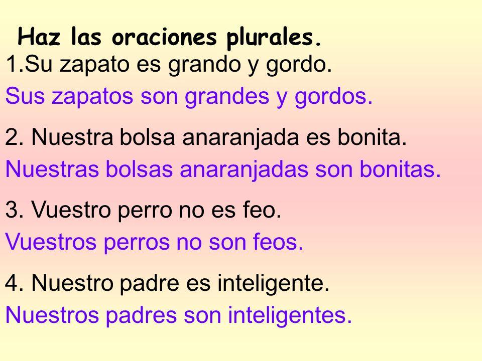Haz las oraciones plurales.