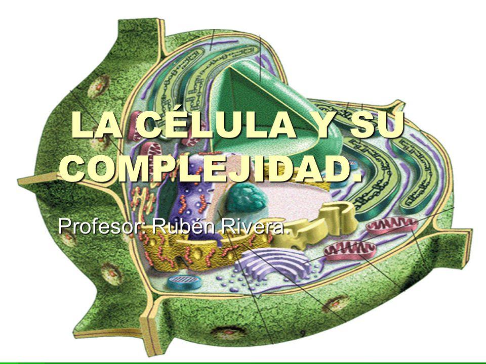 LA CÉLULA Y SU COMPLEJIDAD.