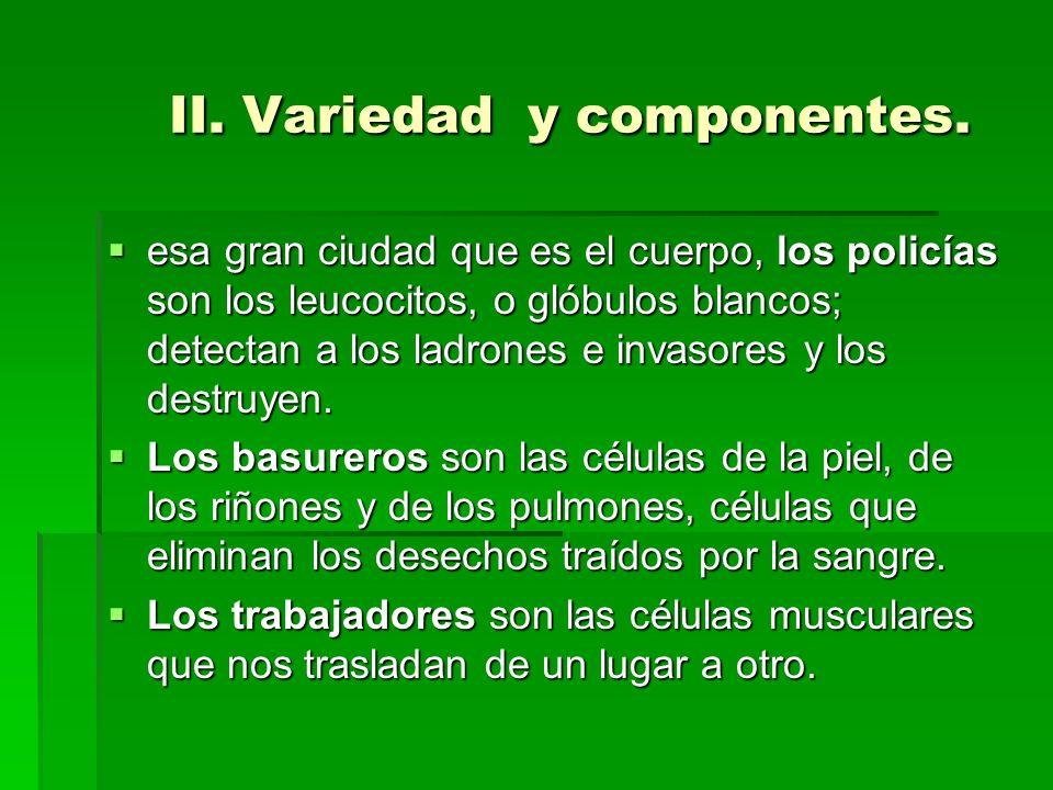 II. Variedad y componentes.
