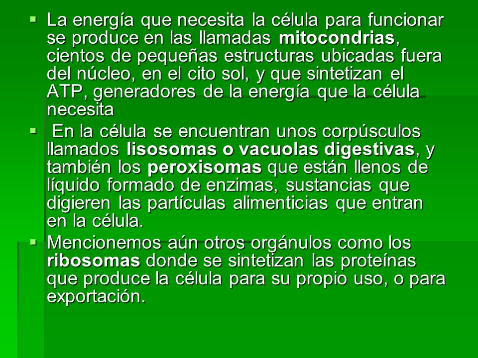 La energía que necesita la célula para funcionar se produce en las llamadas mitocondrias, cientos de pequeñas estructuras ubicadas fuera del núcleo, en el cito sol, y que sintetizan el ATP, generadores de la energía que la célula necesita