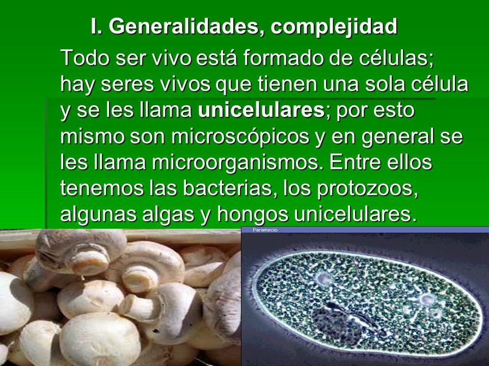 I. Generalidades, complejidad