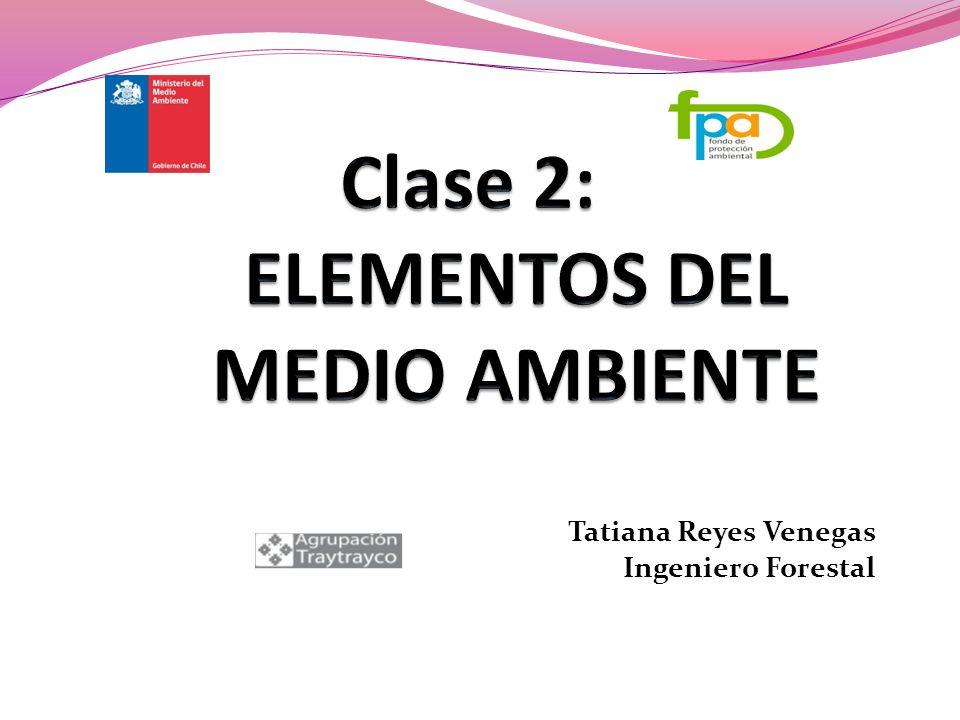 Clase 2: ELEMENTOS DEL MEDIO AMBIENTE