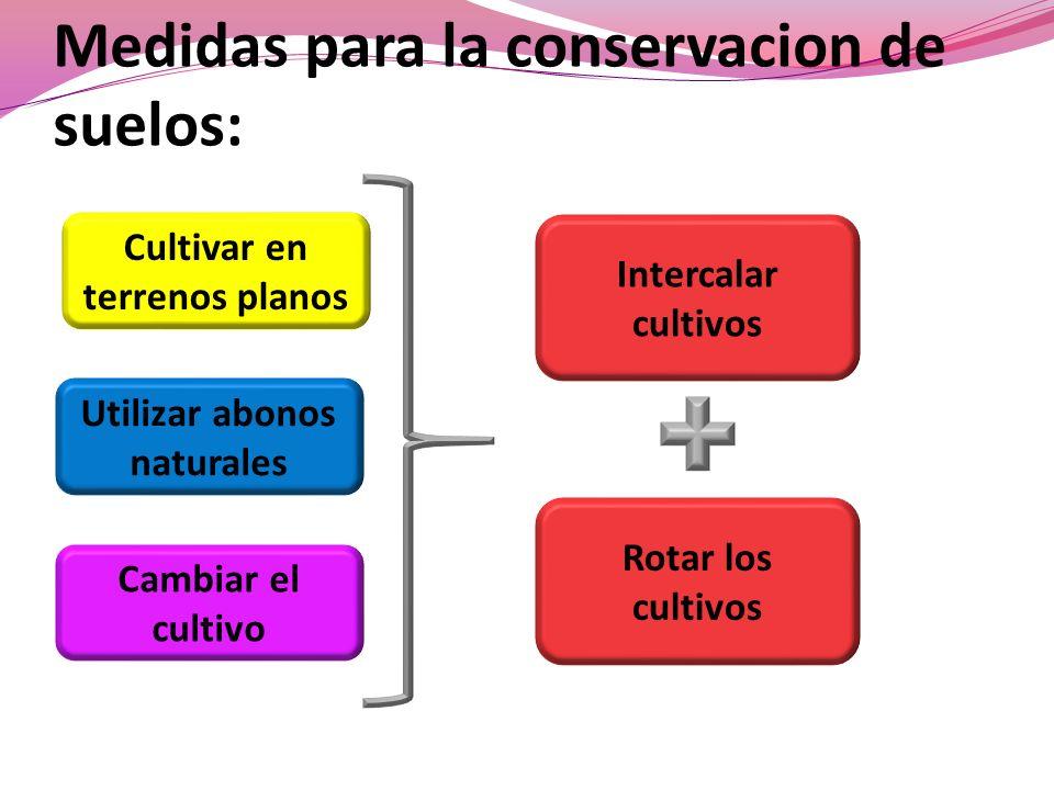 Medidas para la conservacion de suelos:
