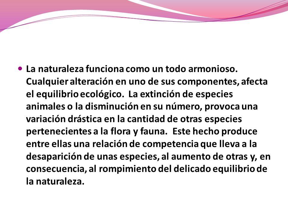La naturaleza funciona como un todo armonioso