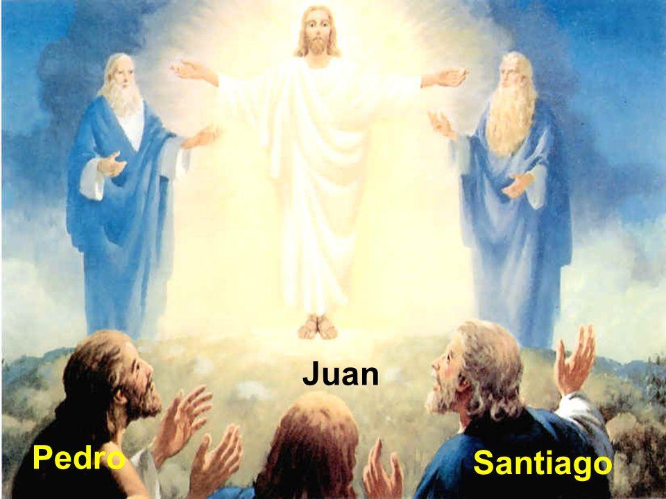 ¿Quién está con Jesús o a quiénes eligió para que estuvieran con él