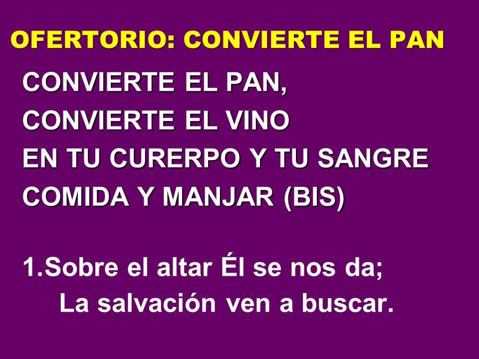 OFERTORIO: CONVIERTE EL PAN