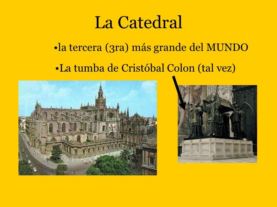 La Catedral la tercera (3ra) más grande del MUNDO
