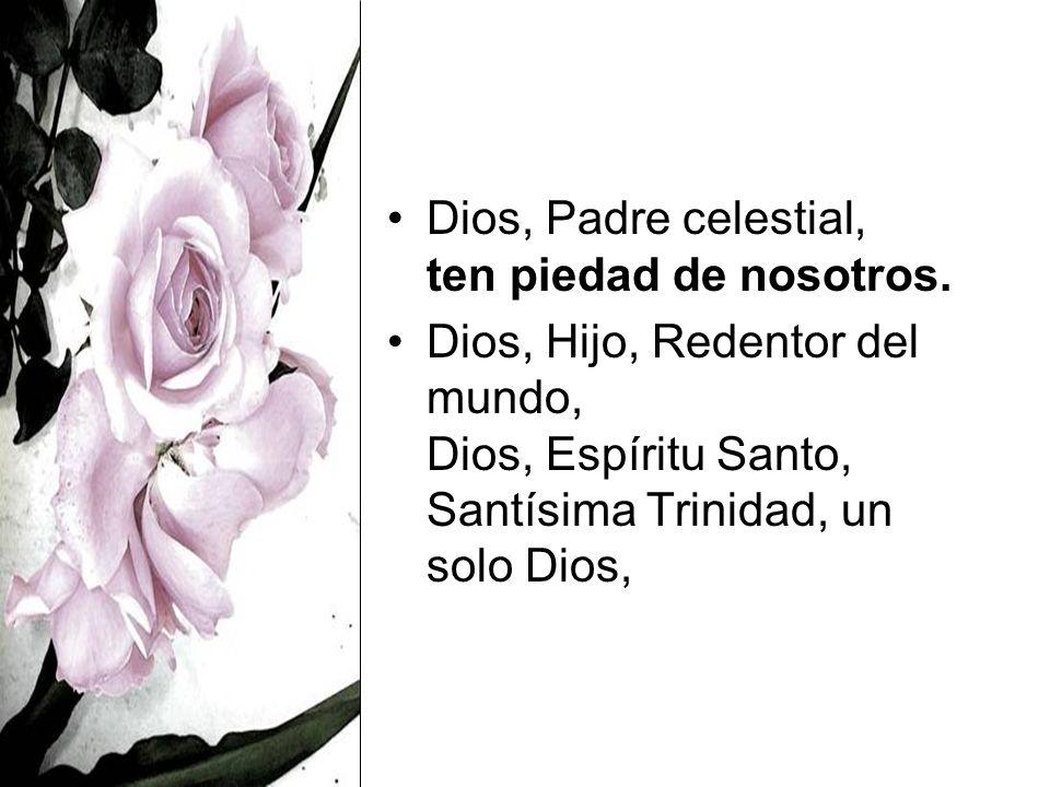 Dios, Padre celestial, ten piedad de nosotros.