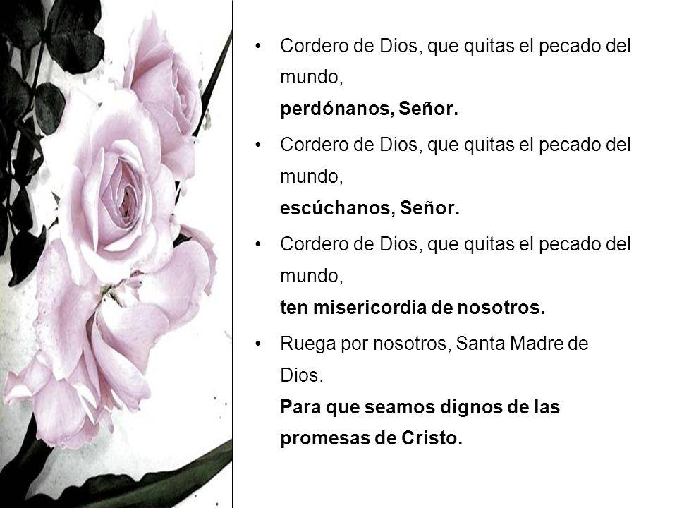 Cordero de Dios, que quitas el pecado del mundo, perdónanos, Señor.
