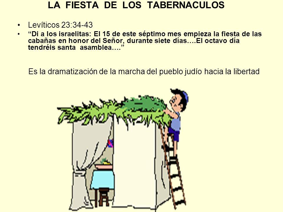 LA FIESTA DE LOS TABERNACULOS Levíticos 23:34-43