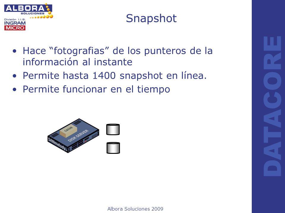 SnapshotHace fotografias de los punteros de la información al instante. Permite hasta 1400 snapshot en línea.