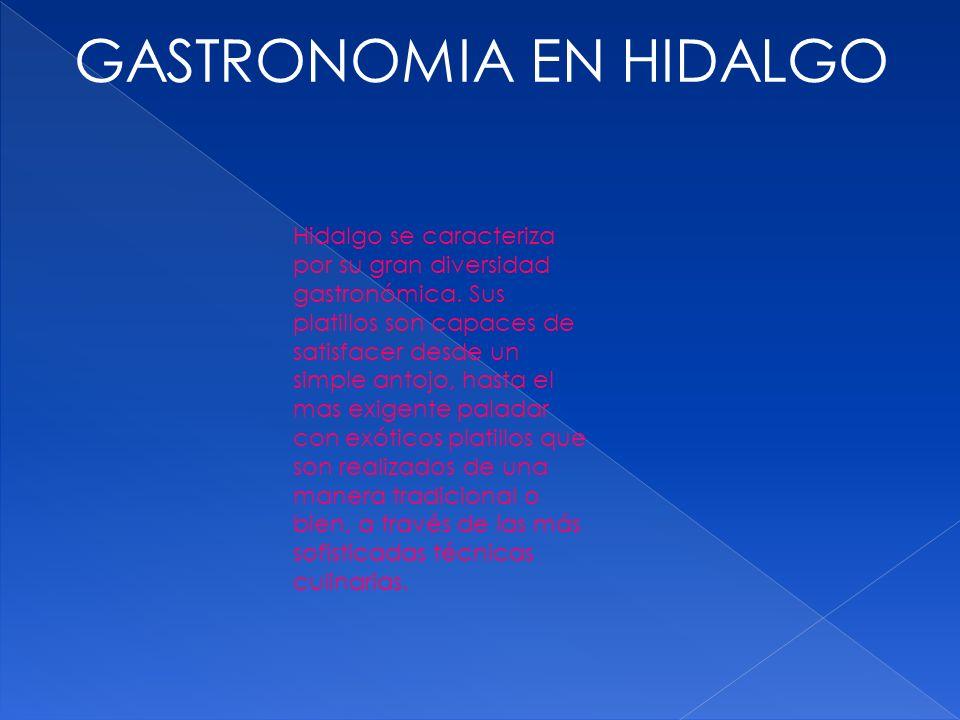 GASTRONOMIA EN HIDALGO