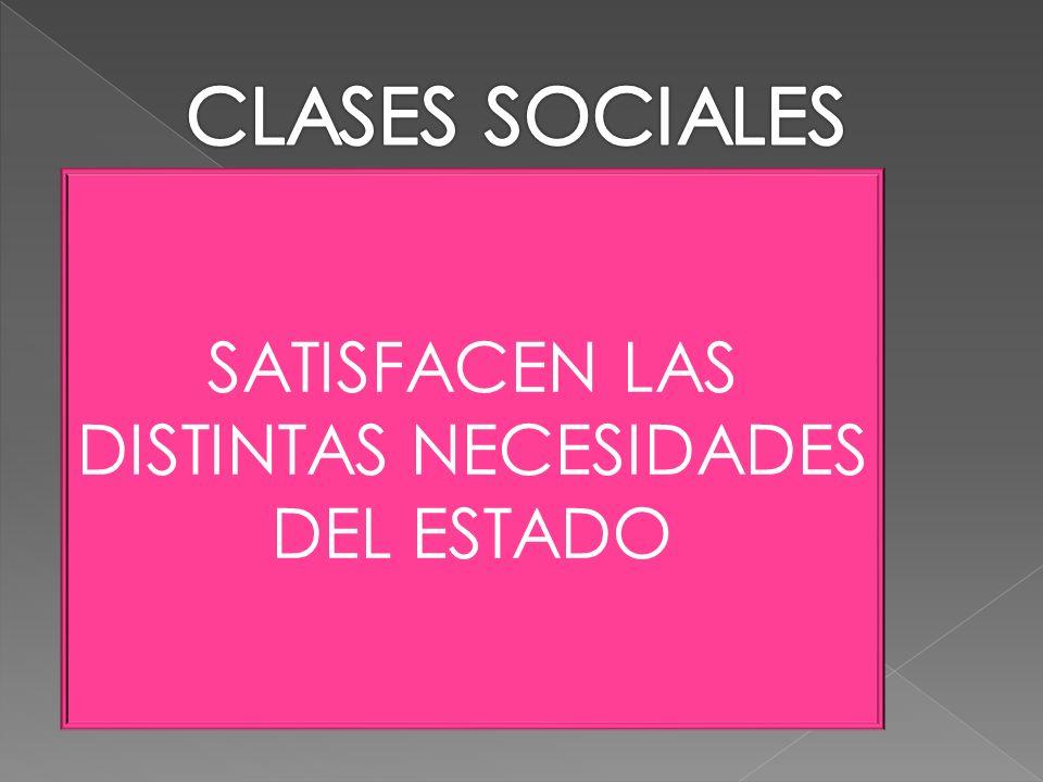 CLASES SOCIALES SATISFACEN LAS DISTINTAS NECESIDADES DEL ESTADO