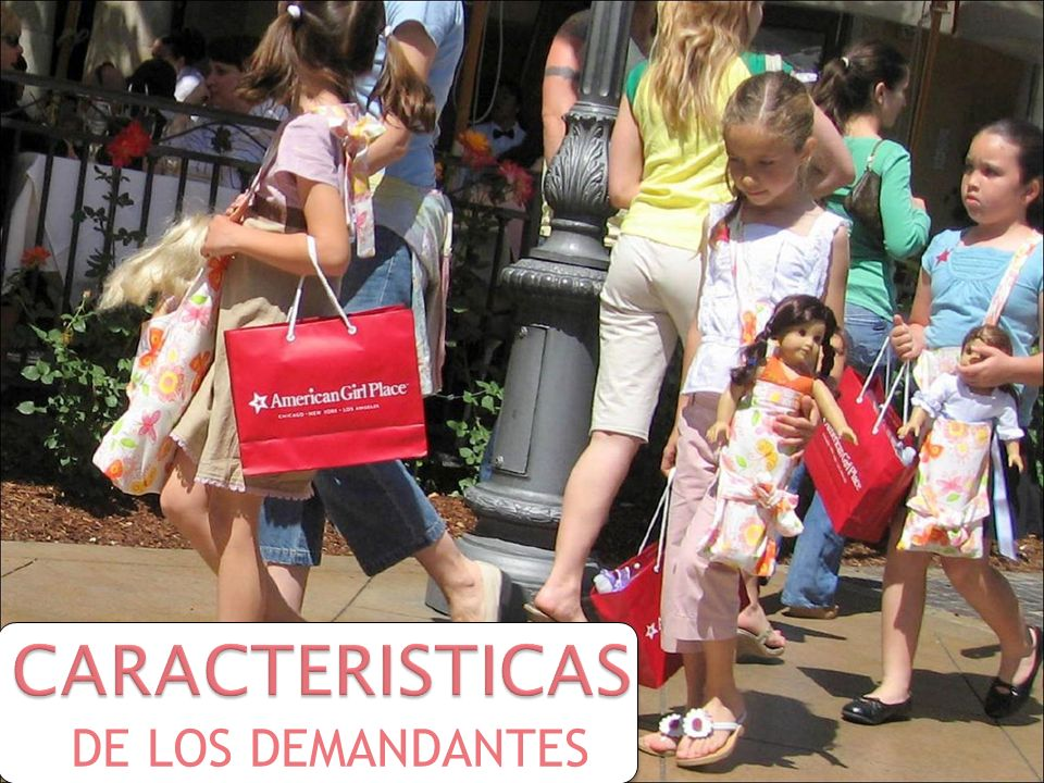CARACTERISTICAS DE LOS DEMANDANTES