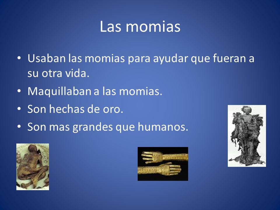 Las momias Usaban las momias para ayudar que fueran a su otra vida.