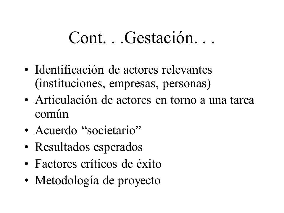 Cont. . .Gestación. . . Identificación de actores relevantes (instituciones, empresas, personas) Articulación de actores en torno a una tarea común.
