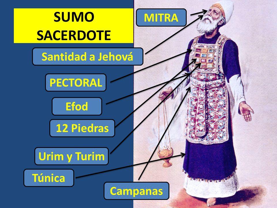 SUMO SACERDOTE MITRA Santidad a Jehová PECTORAL Efod 12 Piedras