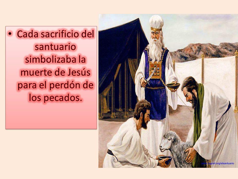 Cada sacrificio del santuario simbolizaba la muerte de Jesús para el perdón de los pecados.