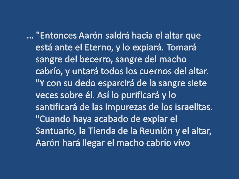 … Entonces Aarón saldrá hacia el altar que está ante el Eterno, y lo expiará.