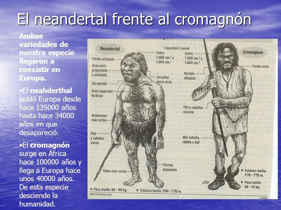 El neandertal frente al cromagnón