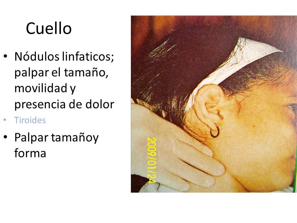 Cuello Nódulos linfaticos; palpar el tamaño, movilidad y presencia de dolor.