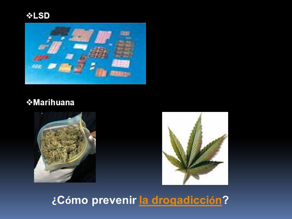 ¿Cómo prevenir la drogadicción