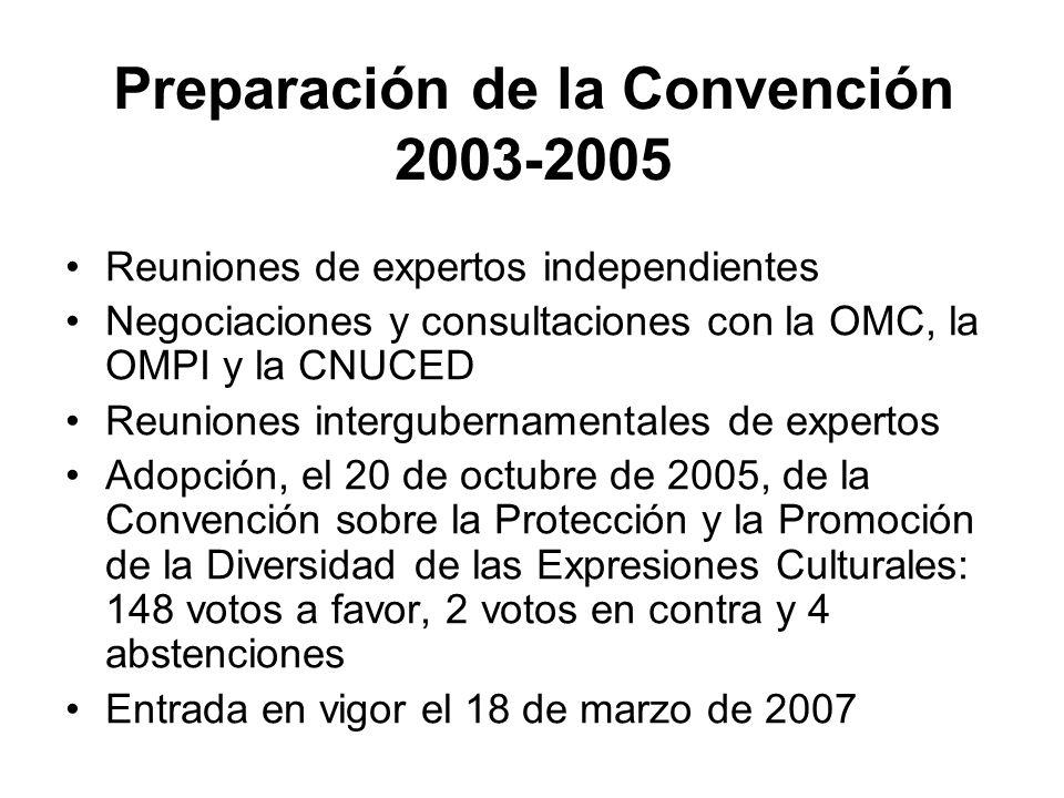 Preparación de la Convención 2003-2005