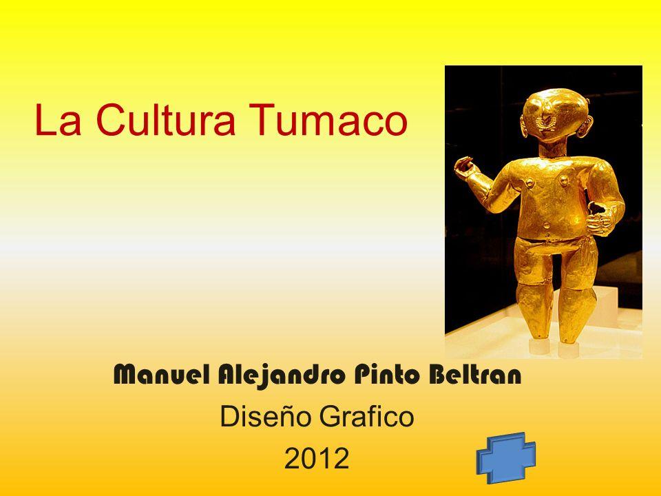 Manuel Alejandro Pinto Beltran Diseño Grafico 2012