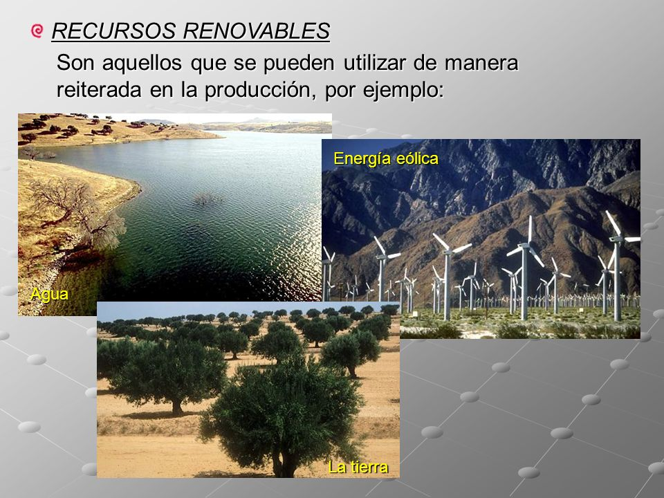 RECURSOS RENOVABLES Son aquellos que se pueden utilizar de manera reiterada en la producción, por ejemplo: