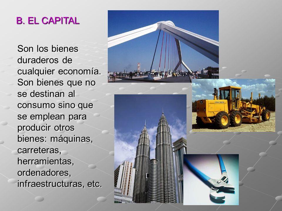 B. EL CAPITAL