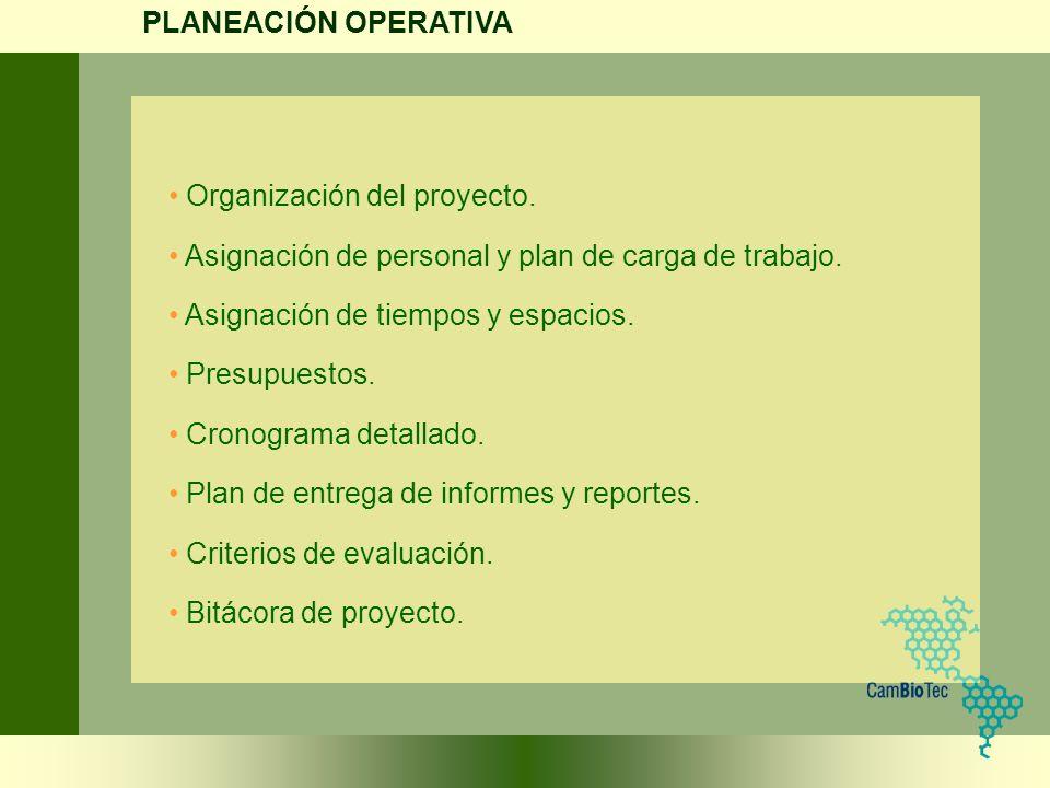 PLANEACIÓN OPERATIVA Organización del proyecto. Asignación de personal y plan de carga de trabajo.