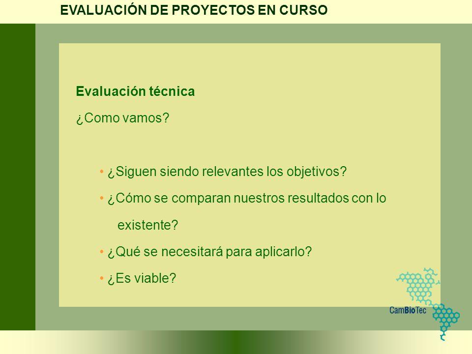 EVALUACIÓN DE PROYECTOS EN CURSO