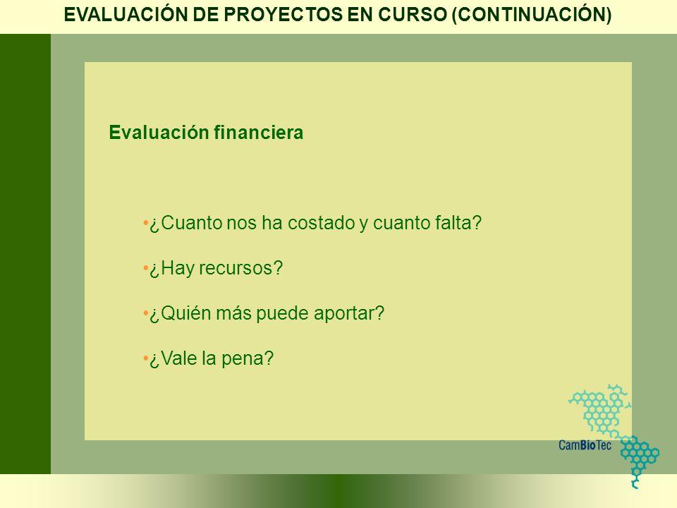 EVALUACIÓN DE PROYECTOS EN CURSO (CONTINUACIÓN)