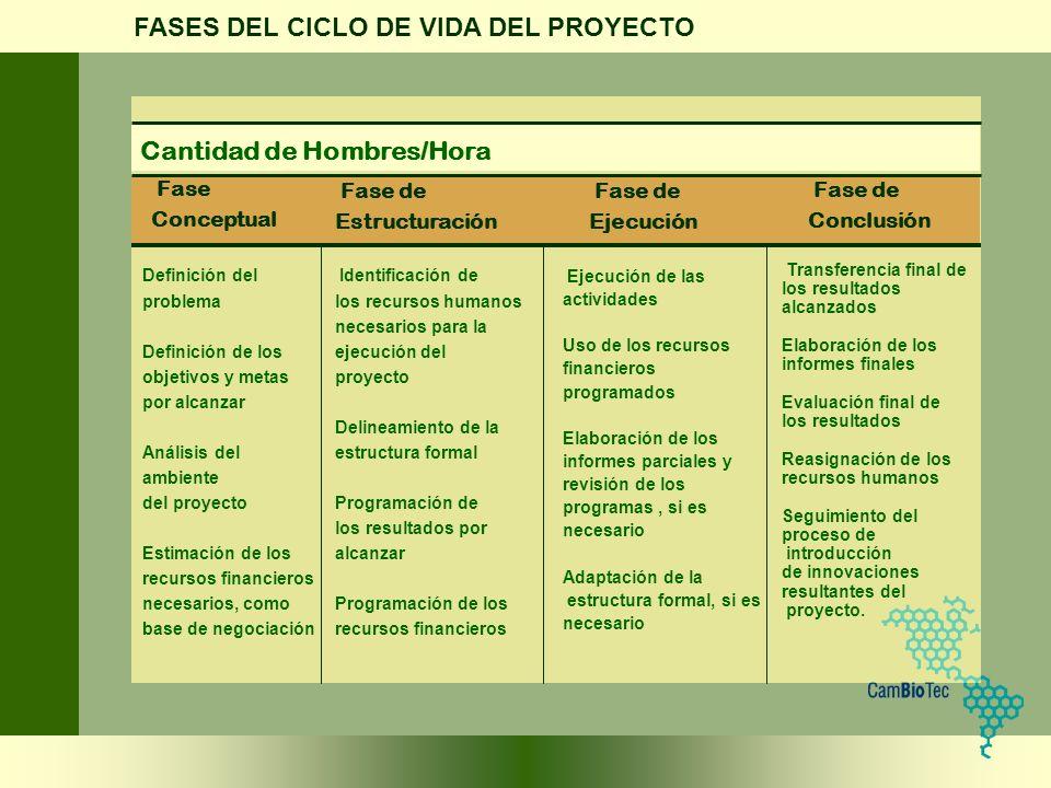 FASES DEL CICLO DE VIDA DEL PROYECTO