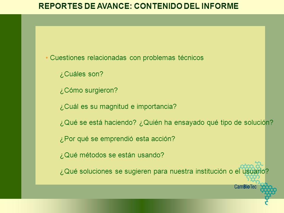 REPORTES DE AVANCE: CONTENIDO DEL INFORME