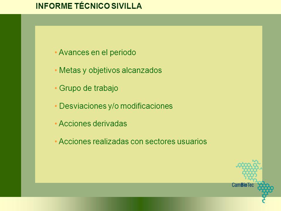 INFORME TÉCNICO SIVILLA